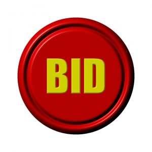 auctions ebay bids
